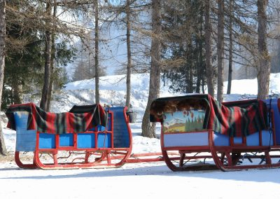 Sleighs in the snow small